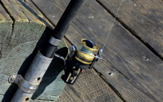 Донная рыбалка — советы новичкам