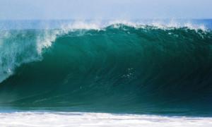 Морские удочки — какое снаряжение выбрать?