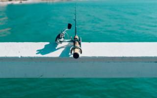 Рыболовные аксессуары