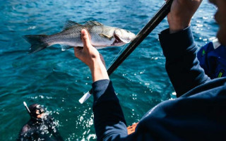 Одежда для рыбалки; как организовать рыбалку