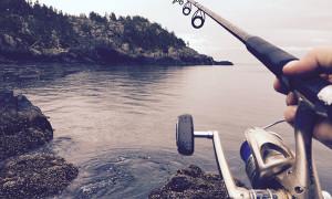 Необходимость начинающему рыболову